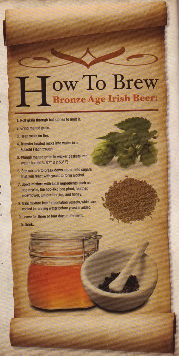 How to brew a Bronze Age Irish Ale